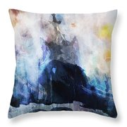 At 65 Degrees South Throw Pillow