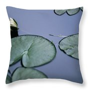 At Claude Monet's Water Garden 2 Throw Pillow
