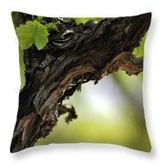 At Lachish Vineyard Throw Pillow
