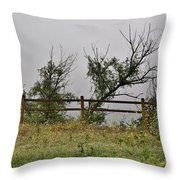 At Peters Canyon In The Rain 1 Throw Pillow
