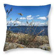 At Point Lawrence Throw Pillow