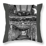 At The Alamo Throw Pillow
