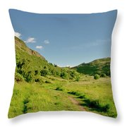 At The Base Of The Ancient Volcano. Throw Pillow