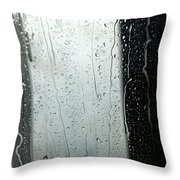 At The Car Wash 17 Throw Pillow
