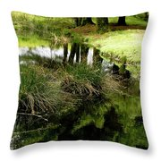 At The Edge Of The Forest Pond. Throw Pillow