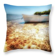 At The Edge Of The Ocean Throw Pillow