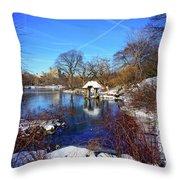 At The Frozen Lake Throw Pillow
