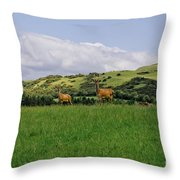 At The Hill Bottom. Throw Pillow