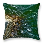 At The Pier Throw Pillow
