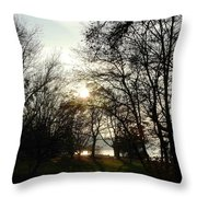 At The Rhine Bank Throw Pillow