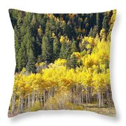 At The Right Time There Throw Pillow