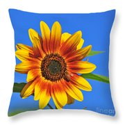 At The Source Throw Pillow