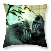 At The Think Tank Throw Pillow by Rebecca Sherman