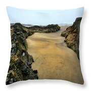 At The Tidepool Throw Pillow
