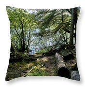 At The Water Edge. Throw Pillow