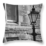 At The Window. Throw Pillow