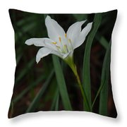 Atamasco Lily Throw Pillow