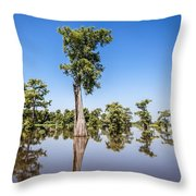 Atchafalaya Cypress Tree Throw Pillow