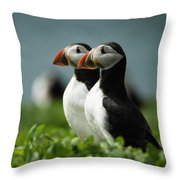 Atlantic Puffins Throw Pillow