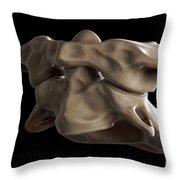 Atlas And Axis Vertebrae Throw Pillow