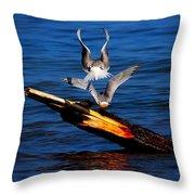 Atop A Tern Throw Pillow