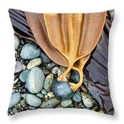 Attached - Laminaria Yezoensis Throw Pillow
