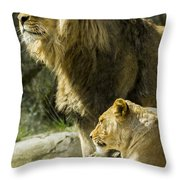 Attention Captured Throw Pillow