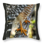 Attention To Detail I Throw Pillow