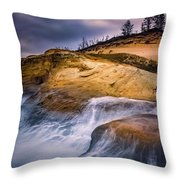 Attracted To The Ocean Throw Pillow