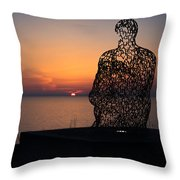 Atwater Park Spillover II Throw Pillow