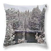 Au Sable River Overlook Throw Pillow