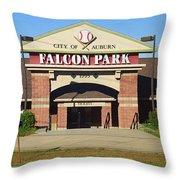 Auburn, Ny - Falcon Park Throw Pillow