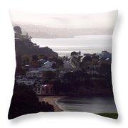 New Zealand - Secluded Cheltenham Beach Throw Pillow