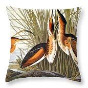 Audubon: Bittern Throw Pillow