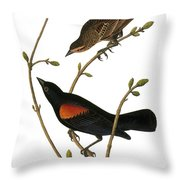 Audubon: Blackbird Throw Pillow
