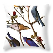 Audubon: Bluebirds Throw Pillow