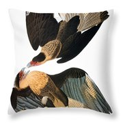 Audubon: Caracara, 1827-38 Throw Pillow