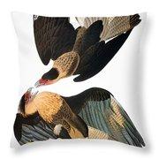 Audubon: Caracara, 1827-38 Throw Pillow