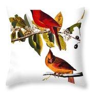 Audubon: Cardinal Throw Pillow