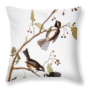 Audubon: Chickadee, (1827-1838) Throw Pillow