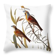 Audubon: Dickcissel Throw Pillow