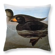 Audubon: Duck, 1827 Throw Pillow
