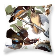 Audubon: Duck Throw Pillow