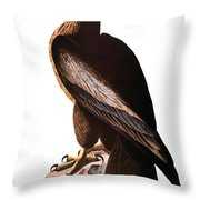 Audubon: Eagle Throw Pillow