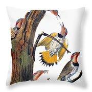 Audubon: Flicker Throw Pillow