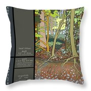 Audubon Forest Hydrology Poster Throw Pillow