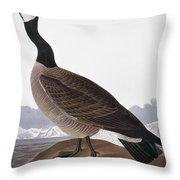 Audubon: Goose, 1827 Throw Pillow