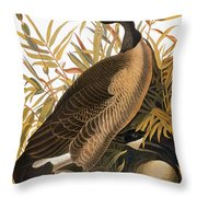 Audubon: Goose Throw Pillow