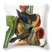 Audubon: Grackle Throw Pillow