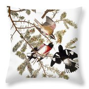 Audubon: Grosbeak Throw Pillow